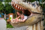 Dino park w Malborku