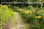 Ogród Botaniczny w Gołubiu