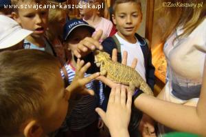 Zoo-Egzotyczne Kaszuby, Tuchlino, koło Sierakowic