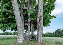 Zdjęcie krzyża przydrożnego w Wilanowie koło Kartuz przy ul. Górnej.