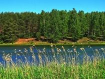 Jezioro Czarne, okolice Niesiołowic-2