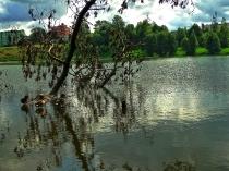 Jezioro Klasztorne, Kartuzy