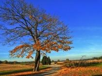 Kaszubska jesień, Hopowo