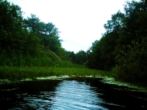 stara rzeka przy jeziorze Kłodno