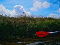Rzeka Słupia-1