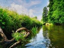 Rzeka Słupia-4