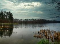 Rzeka Słupia-6