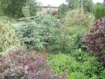 Ogród w Mirachowie_29