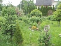 Ogród w Mirachowie_31