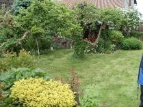 Ogród w Mirachowie_5