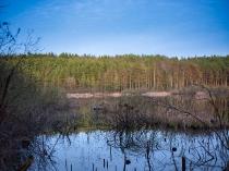 Borowo Jezioro-6