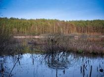 Borowo Jezioro-7