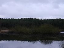 Borowo Jezioro-8