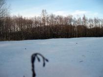 Piękne miejsca i widoki Chmielna_14
