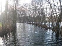 Piękne miejsca i widoki Chmielna_6