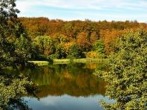 Jeziora Klasztorne jesienią w Kartuzach