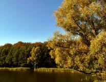 Jezioro Klasztorne_6