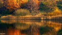 Kartuzy - Jeziora Klasztorne - jesien_23