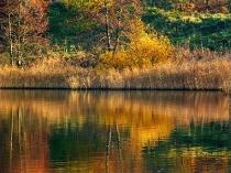 Kartuzy - Jeziora Klasztorne - jesien_24