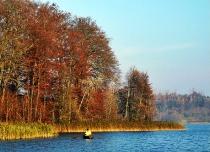 Kartuzy - Jeziora Klasztorne - jesien_38