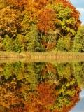 Kartuzy - Jeziora Klasztorne - jesien_9