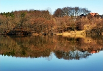 Wiosna w Kartuzach Jezioro Klasztorne Duze i Male_3