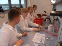 Laboratoria UG-4