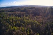 Marszewska Góra - widok na las-2