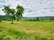 Mirachowo zdjęcia z miejscowości-2