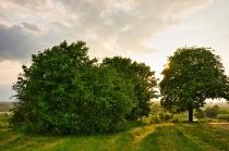 Roztoka zdjęcia Krajobrazowe-4