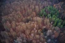 Staniszewskie Zdroje rezerwat przyrody-2