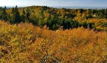 Jesienny widok z Wiezycy_13
