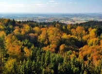 Jesienny widok z Wiezycy_6