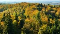 Jesienny widok z Wiezycy_8