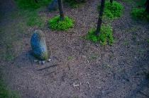 Węsiory - Kamienne Kręgi-4