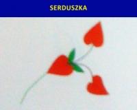 Motywy-Kaszubskie_29