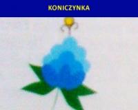 Motywy-Kaszubskie_7