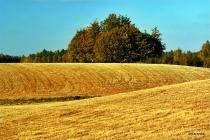 Jesien na Kaszubach_16