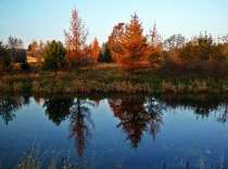 Jesien nad Wda_10