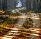 Jesien nad Wda_1