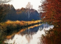 Jesien nad Wda_5
