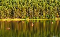 Jezioro Jelenie jesien_5