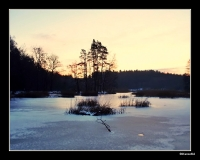 Dolina Slupi zima_1