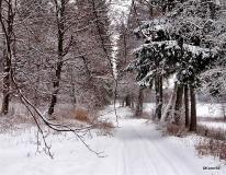 Dolina Slupi zima_3