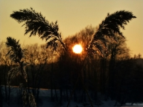 Jezioro Ostrzyckie zima_16
