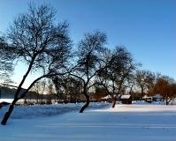 Jezioro Ostrzyckie zima_22