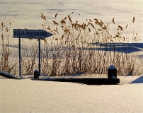 Jezioro Ostrzyckie zima_23