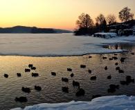Jezioro Ostrzyckie zima_26