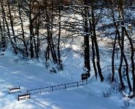 Jezioro Ostrzyckie zima_4