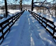 Jezioro Ostrzyckie zima_6